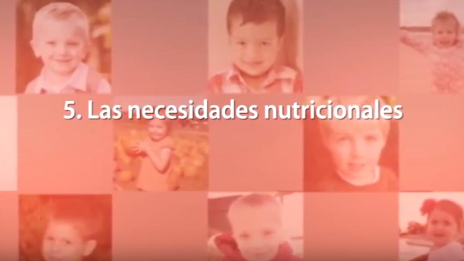 5. Las necesidades nutricionales